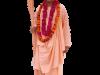 Bhakti Gaurava Narayana Swami